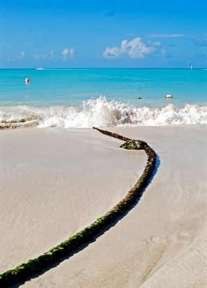 Beached Rope